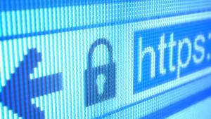 Research: Dutch not safe on the internet